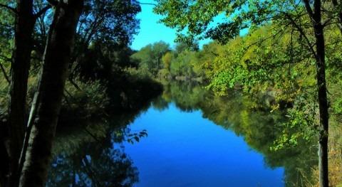 Río Henares (Wikipedia/CC).