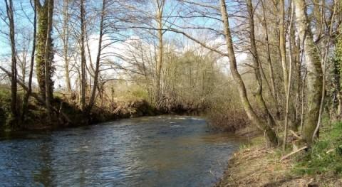 CHE adjudica trabajos conservación ríos Álava y Burgos