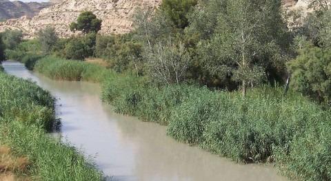 Río Segura en la Región de Murcia (Wikipedia/CC).