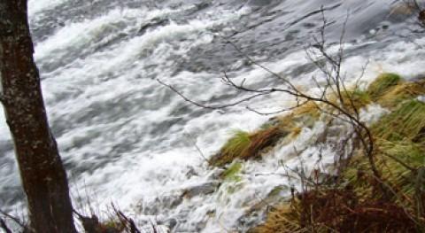 ONG ambientales denuncian: nuevos Planes Cuenca suponen duro golpe sociedad