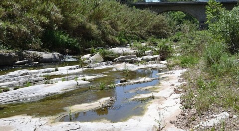 río Ripoll soporta grave impacto ecológico efluentes origen industrial