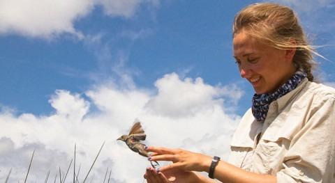 vertidos petróleo dejan huella aves y cadena alimentaria
