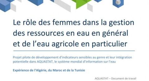 El papel de la mujer en la gestión de los recursos hídricos