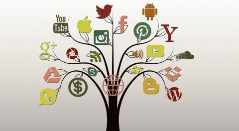 Fomentar aprendizaje transversal temas ambientales mediante uso TIC