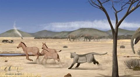 sabana casi desértica se extendía Madrid hace 14 millones años