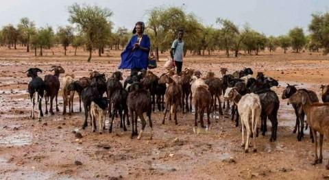 inteligencia artificial contribuye lucha cambio climático Sahel