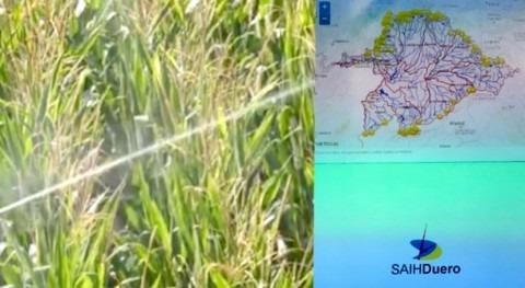 CHD regula control caudales agua mediante sistemas telemedida
