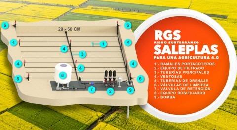 Riego subterráneo (RGS): claves diseño evolución Agricultura 4.0