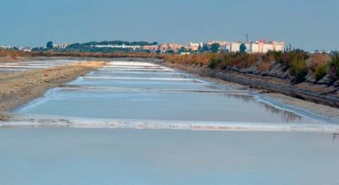 Salina Esperanza servirá como modelo recuperación marismas Barbate