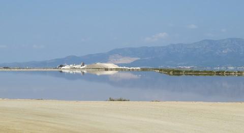 tormenta Gloria deja nueva isla y nos recuerda delicado equilibrio delta Ebro