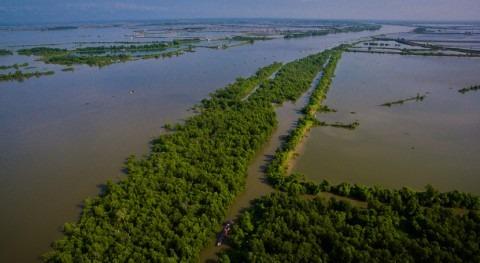 Filipinas designa humedal costero Día Mundial Humedales