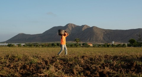 Paralizar trasvase Tajo-Segura acabará 40.000 empleos Campo Cartagena