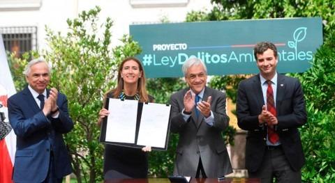 Chile propone endurecer ley delitos graves medio ambiente