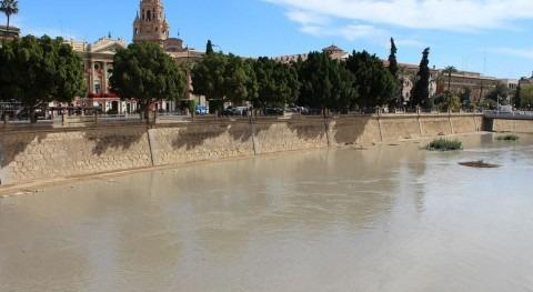 extracciones ilegales agua cuenca Segura dejan agua regantes, denuncia IU-Verdes