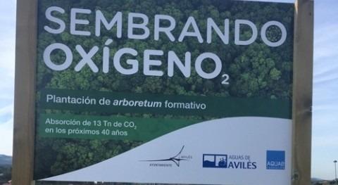 Fundación Aquae eliminará 19 toneladas CO2 40 años creación dos jardines Avilés
