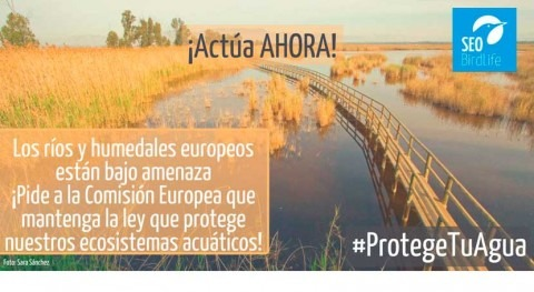 España debe mantenerse firme defensa Directiva Marco Agua, ONG ambientales
