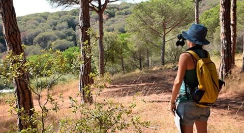 sequías acumuladas diciembre afectan salud bosques catalanes