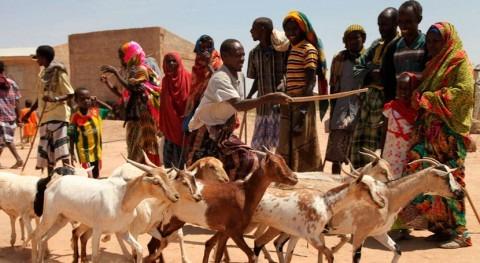 severa sequía que azota este África deja al borde muerte 700.000 niños