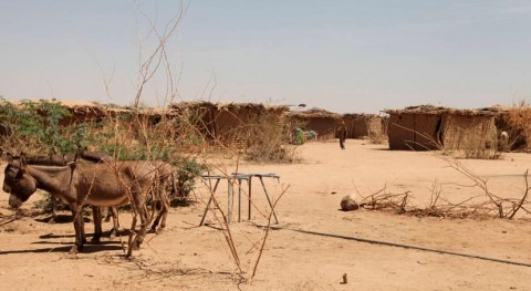 Fondo Emergencias destina 18,5 millones dólares Etiopía sequía