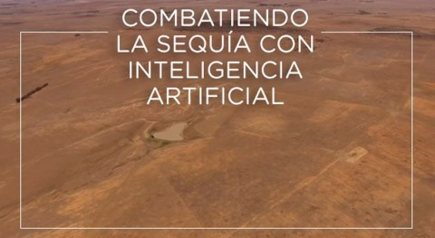 Combatiendo sequía inteligencia artificial