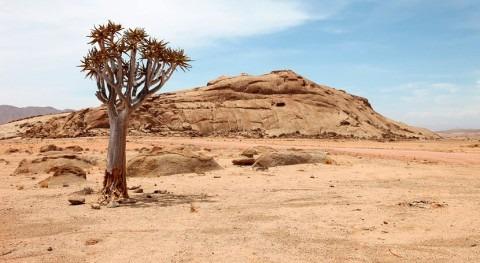 UE incrementa respuesta países Cuerno África afectados sequía