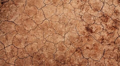 Preparar agricultores, clave afrontar sequía