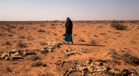 falta lluvias amenaza sustento 2,7 millones somalíes y seguridad alimentaria