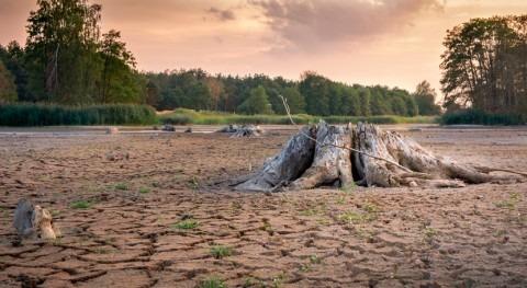 UE moviliza 22,8 millones euros ayuda humanitaria paliar sequía África