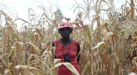 sequía y inflación disparan hambre Zimbabwe