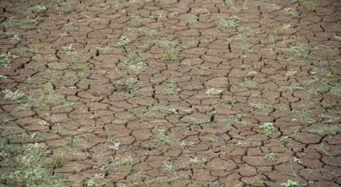 ¿Cómo actuar riesgo catástrofes naturales?