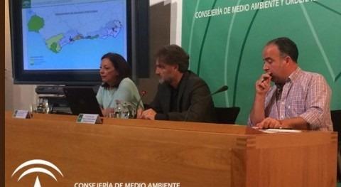 Gobierno andaluz asegura que ninguna comarca cuenta aún declaración sequía