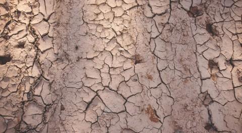 """Nobel Edward Rubin pide """"liderazgo"""" cambio climático y advierte sequía"""