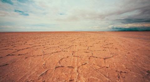 ONU y ONG piden 710 millones dólares evitar hambruna Somalia sequía
