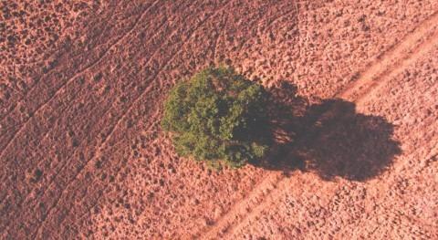 aumento sequía y aridez está impulsado nuevo fenómeno retroalimentación