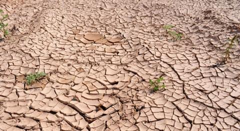 sequías Estados Unidos podrían estar relacionadas sí