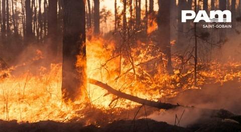 Saint-Gobain PAM: gran aliado prevención incendio