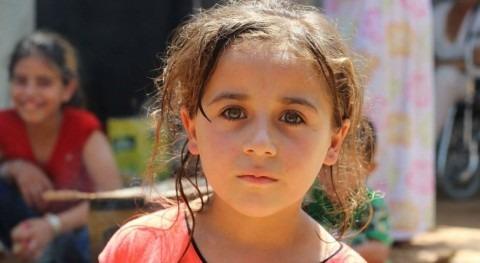 Crisis Siria: grifos secos 2 millones personas violencia Alepo
