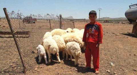 lluvias abundantes ofrecen leve respiro población siria