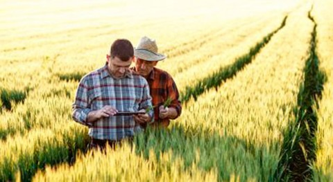 Evolución agricultura transformación digital