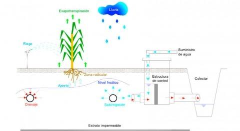IMTA desarrolla software modelar proceso regulación régimen humedad suelo