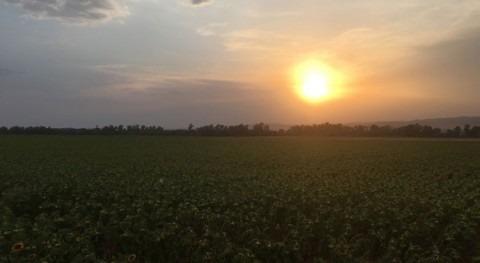 sol como fuente energía agricultura regadío