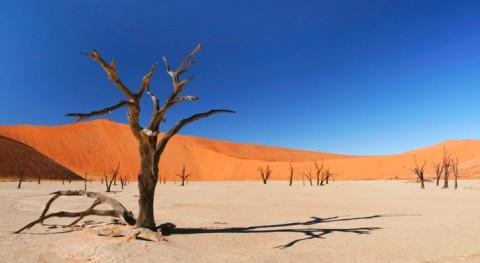 Imagen de dreamatico.com.