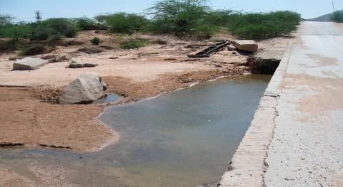 Alemania se compromete duplicar ayuda Somalia combatir sequía