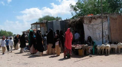 verano amenaza aumento casos cólera Somalia, OMS