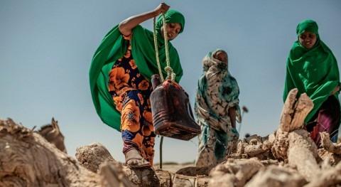 Naciones Unidas y Gobierno Somalia declaran oficialmente estado sequía país