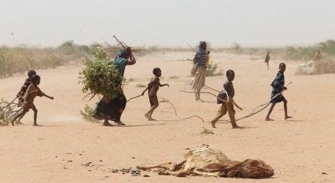 Más 5 millones somalíes sufrirán inseguridad alimentaria antes 2020 causa sequía