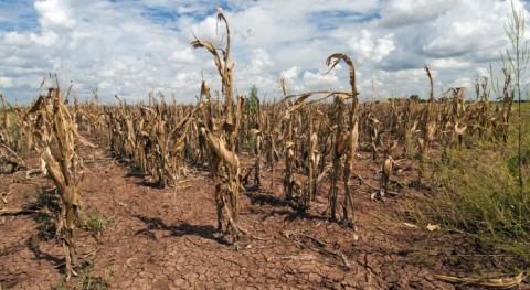 efectos cambio climático eventos meteorológicos extremos se subestima frecuencia