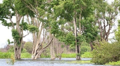 Camboya designa Stung Sen como quinto sitio Ramsar