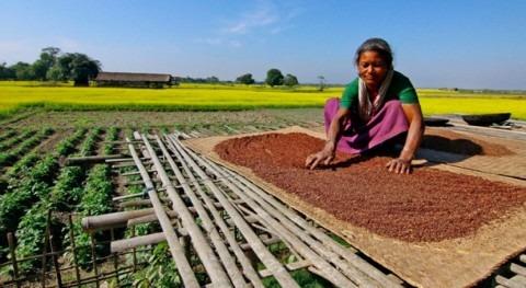 agua, factor clave reducir subnutrición países desarrollo