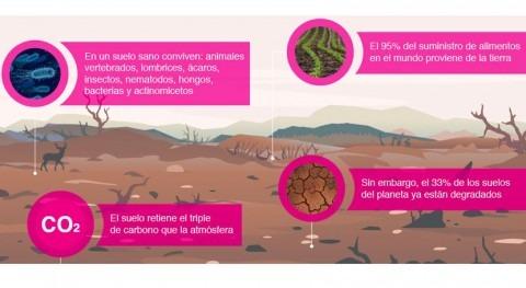 contaminación suelo provoca reacción cadena que acaba afectando salud humana